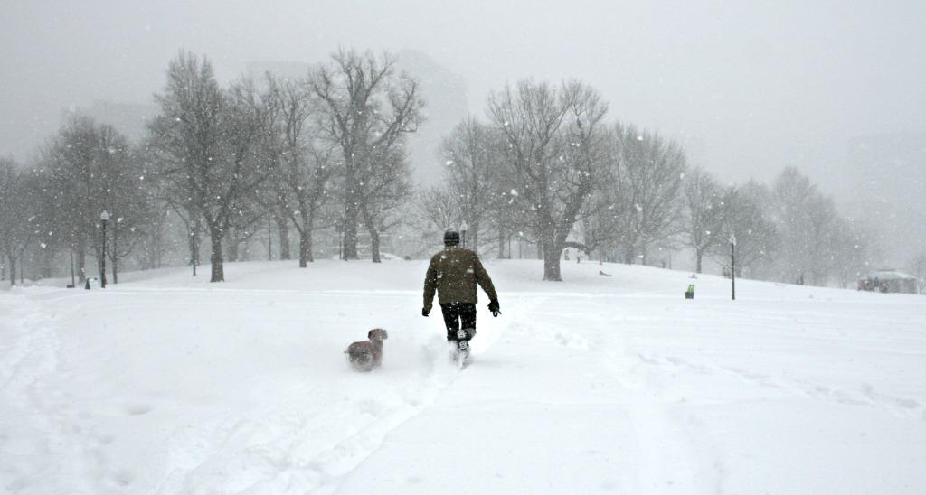 Blizzard Juno