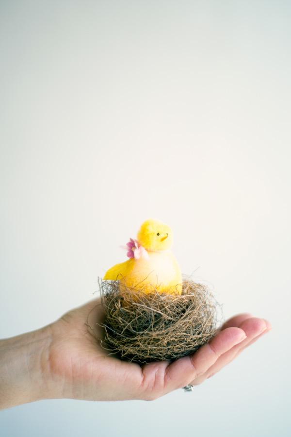 Easter Egg Chick Family
